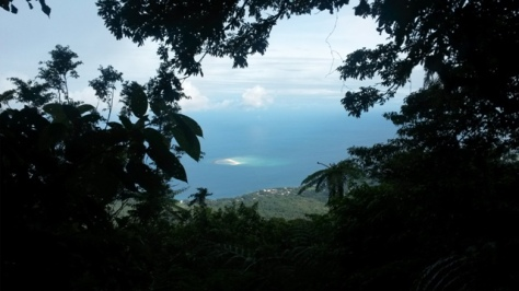 viewpoint-White Island in front