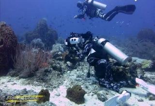 Garri having fun shooting with those beautiful corals